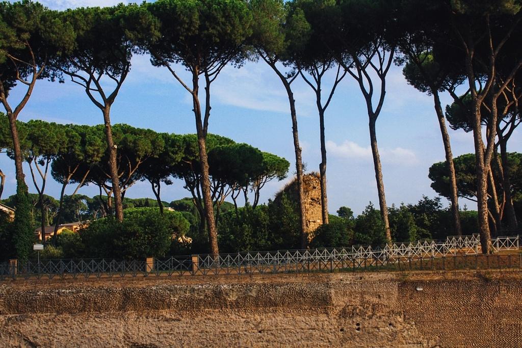 Forum et Mont Palatin, Rome