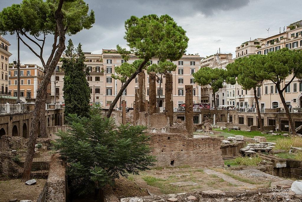 Largo di Torre Argentina, Rome